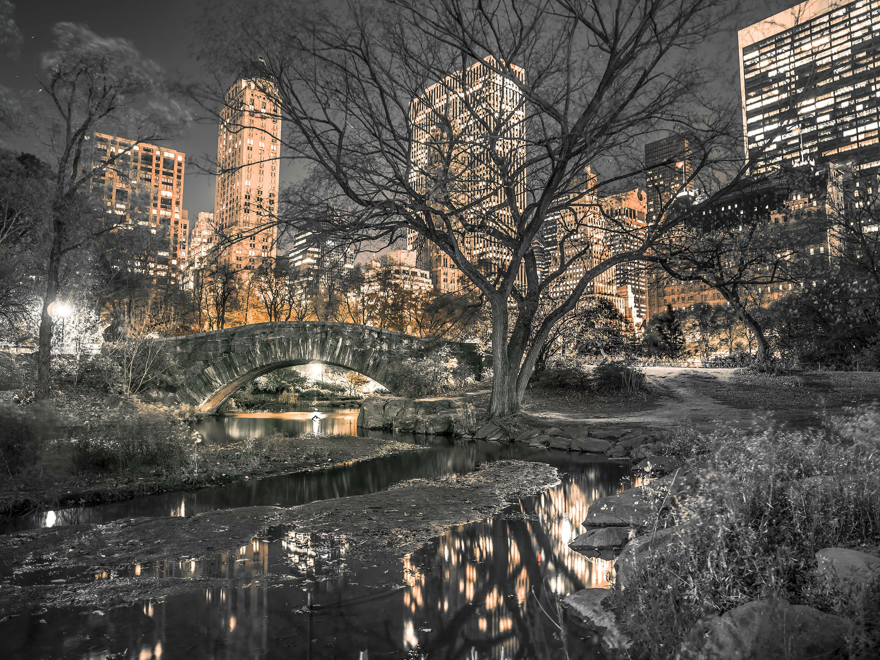 Central park in the evening
