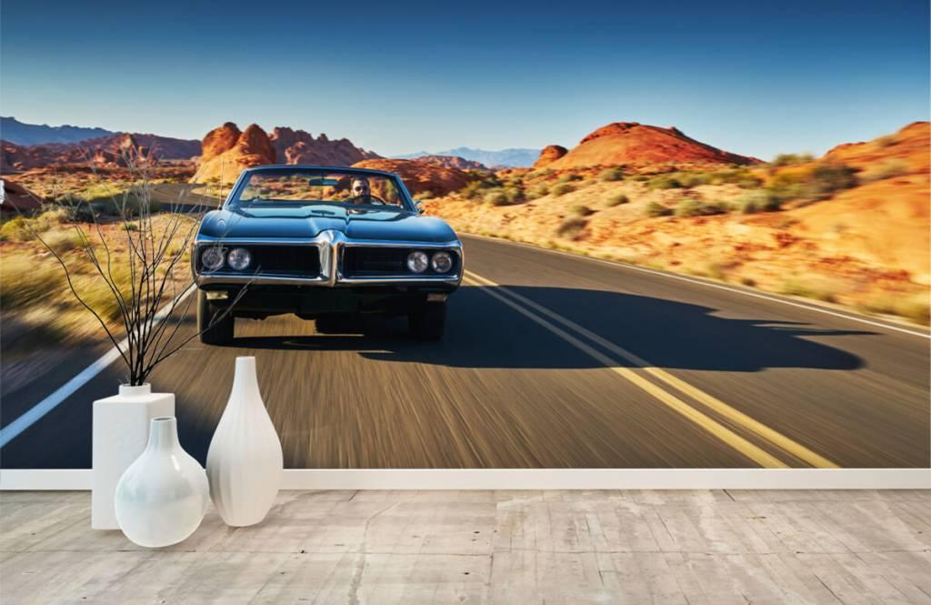 Transportation - Muscle car in an American landscape - Teenage room 6