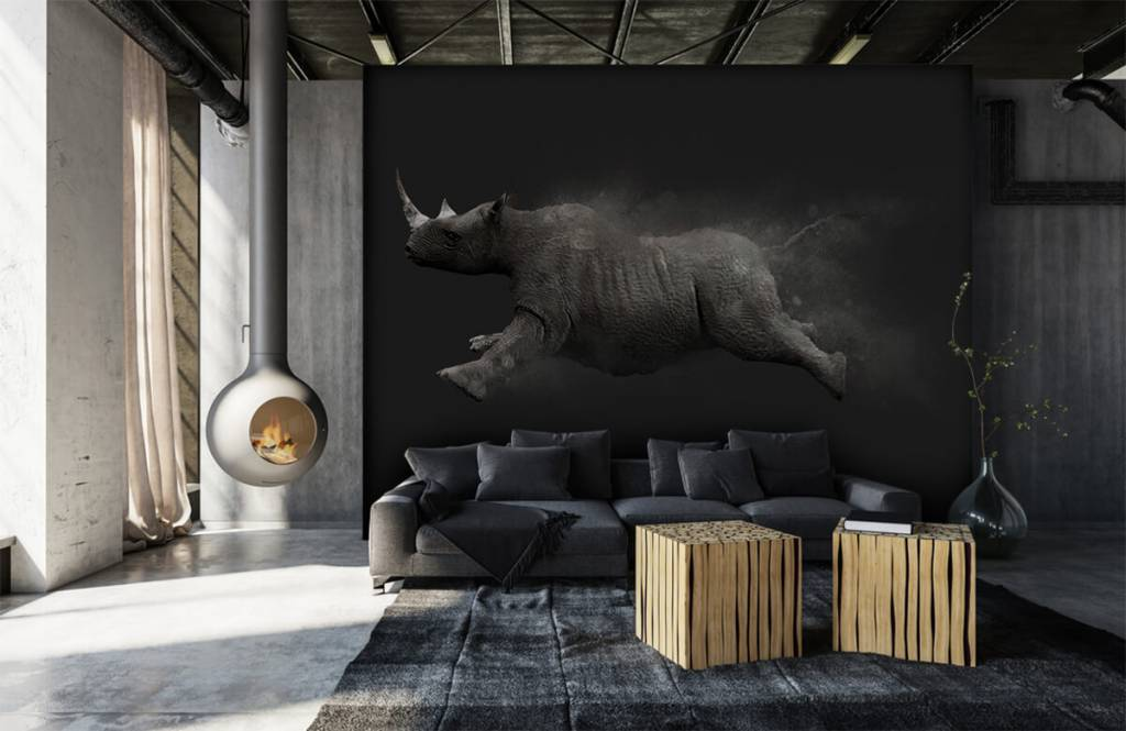 Other - Jumping rhino - Teenage room 5