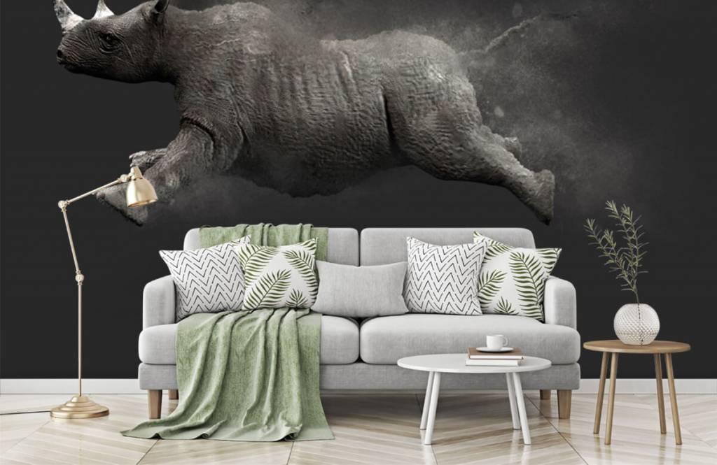 Other - Jumping rhino - Teenage room 6