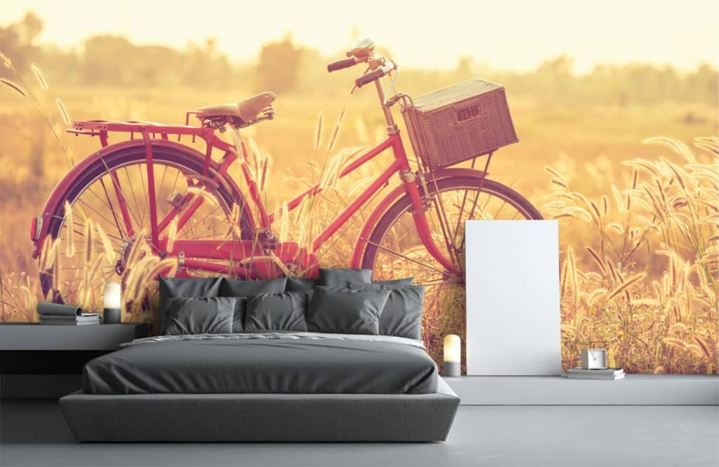 Landscape wallpaper - Vintage bike - Bedroom 2