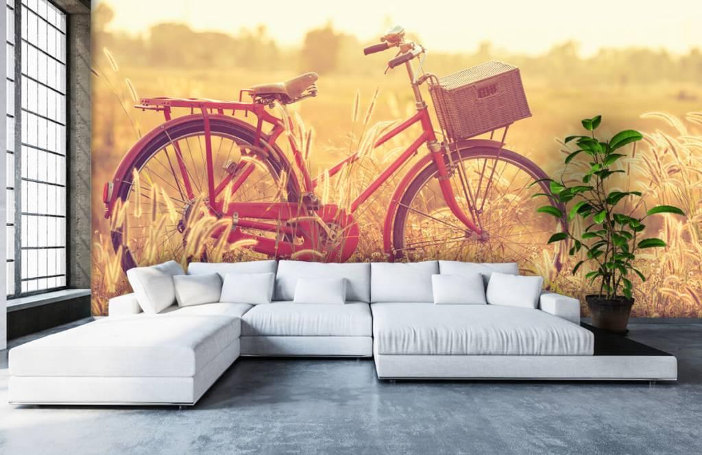 Landscape wallpaper - Vintage bike - Bedroom 5
