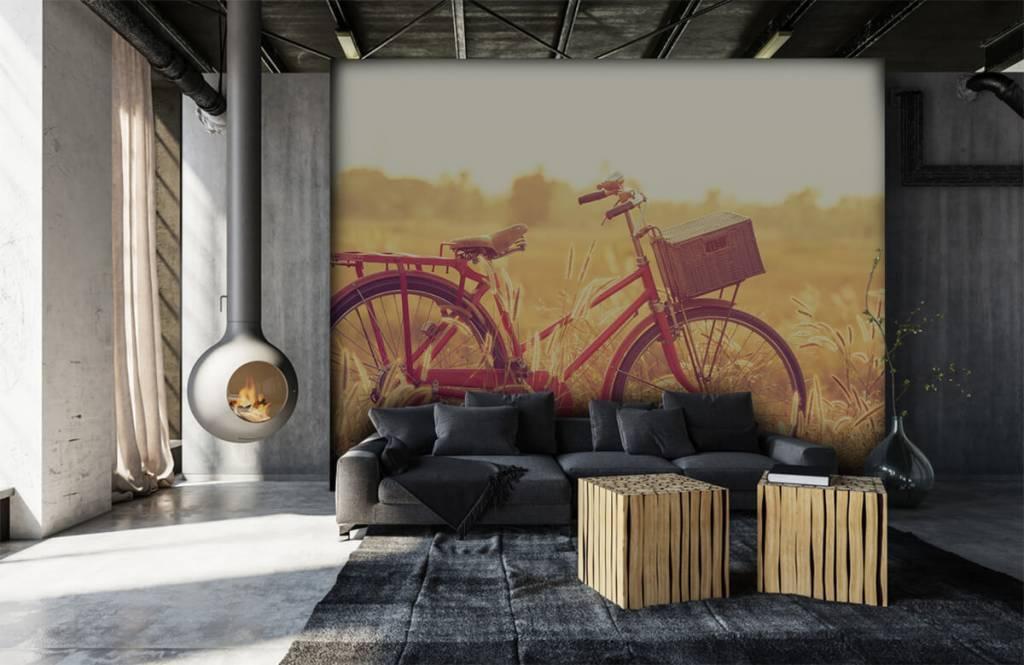 Landscape wallpaper - Vintage bike - Bedroom 6