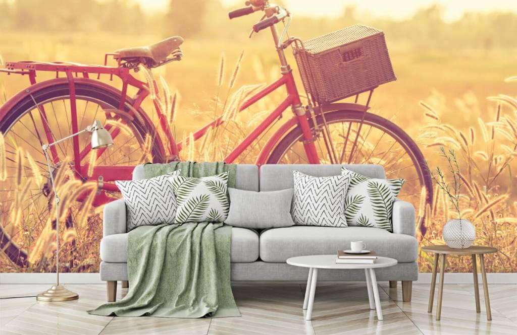 Landscape wallpaper - Vintage bike - Bedroom 7