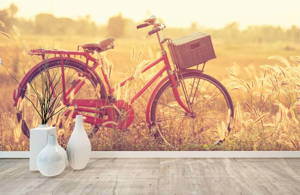 Landscape wallpaper - Vintage bike - Bedroom 8
