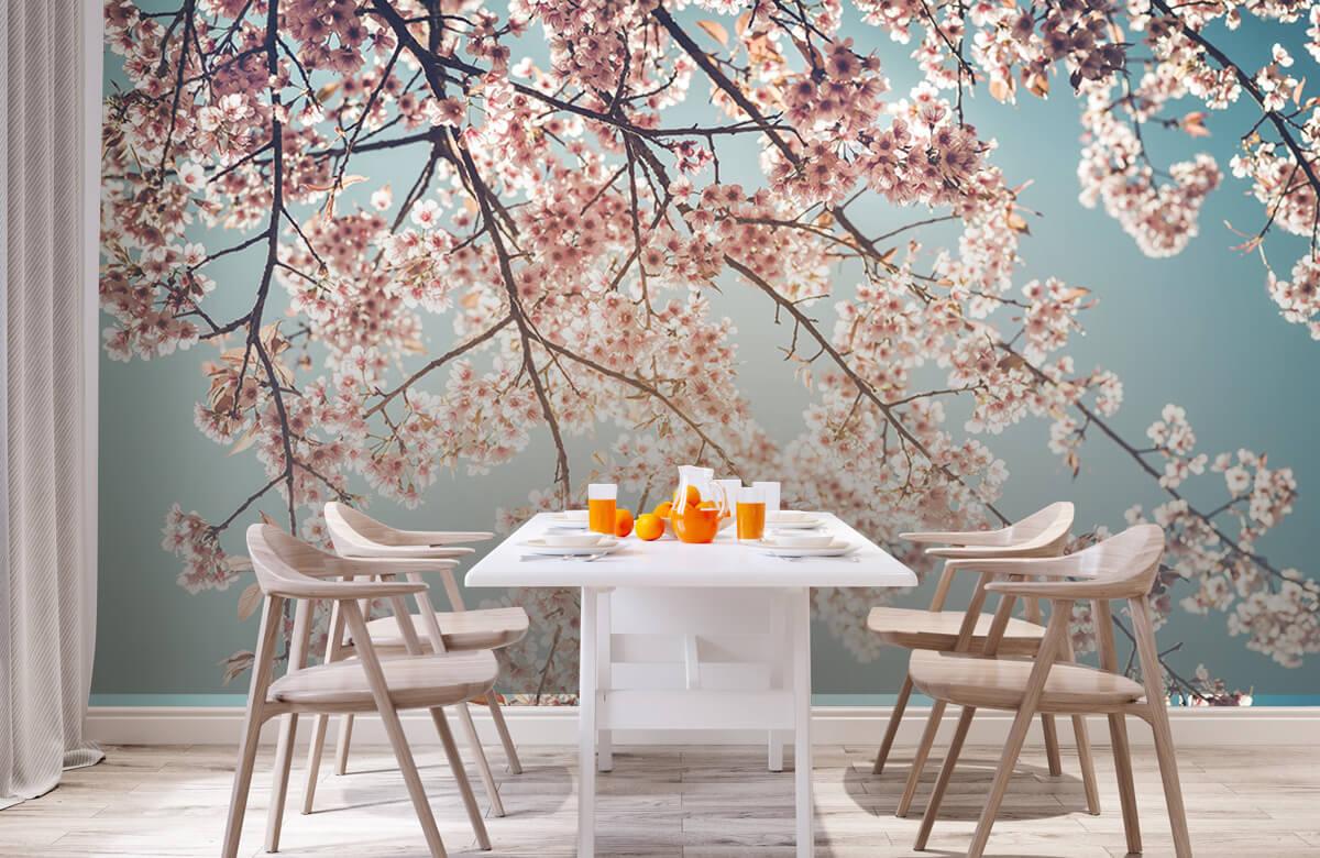 Blossom - Kersenbloesem - Bedroom 2