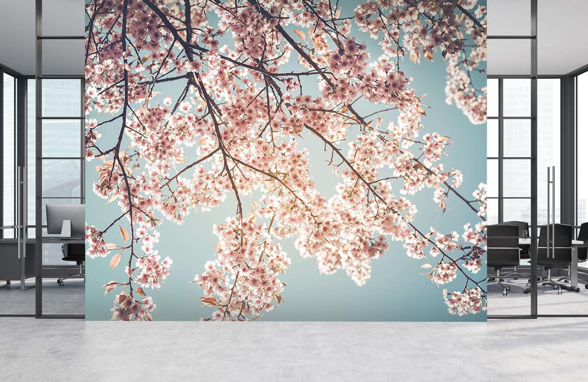 Blossom - Kersenbloesem - Bedroom 4