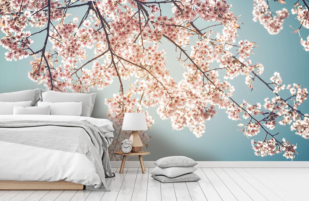 Blossom - Kersenbloesem - Bedroom 7