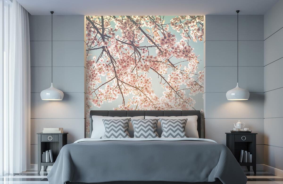 Blossom - Kersenbloesem - Bedroom 8
