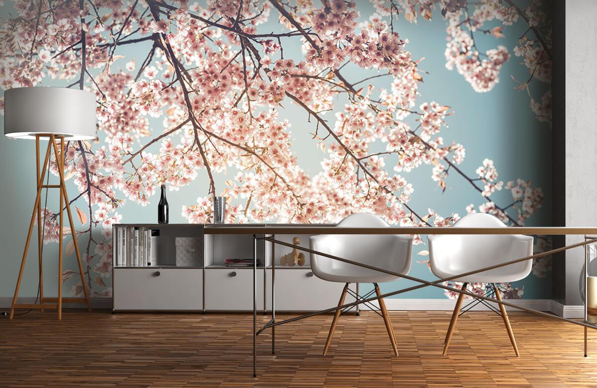 Blossom - Kersenbloesem - Bedroom 11