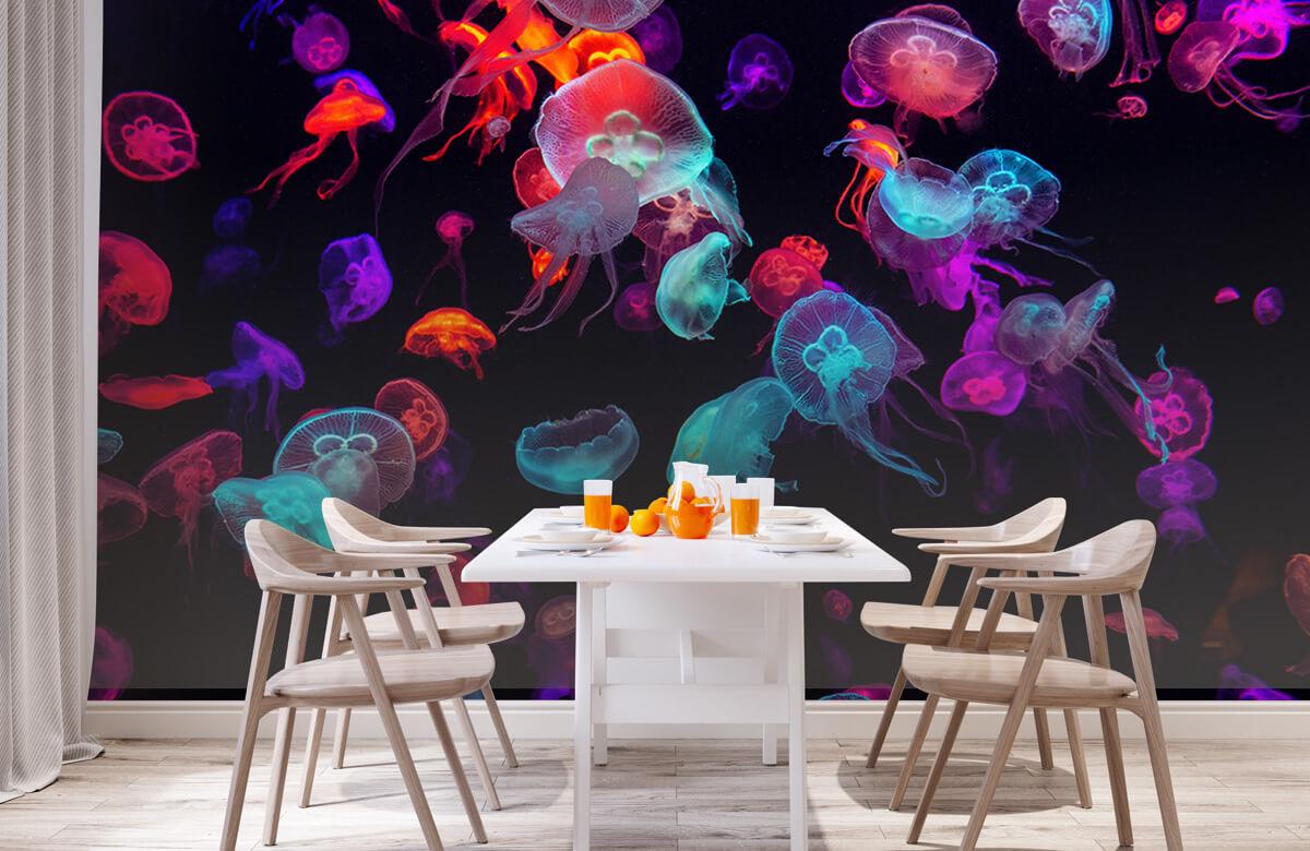 Animals Coloured jellyfish 2