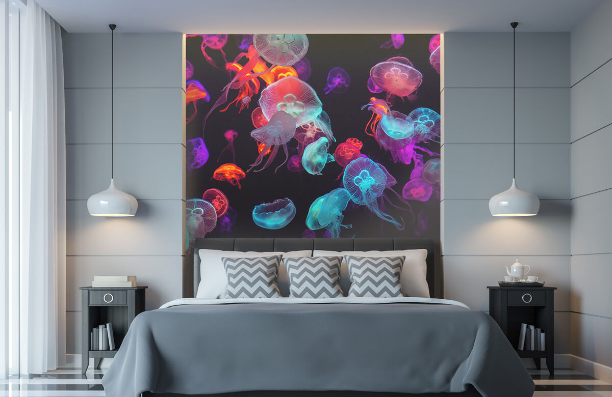 Animals Coloured jellyfish 1