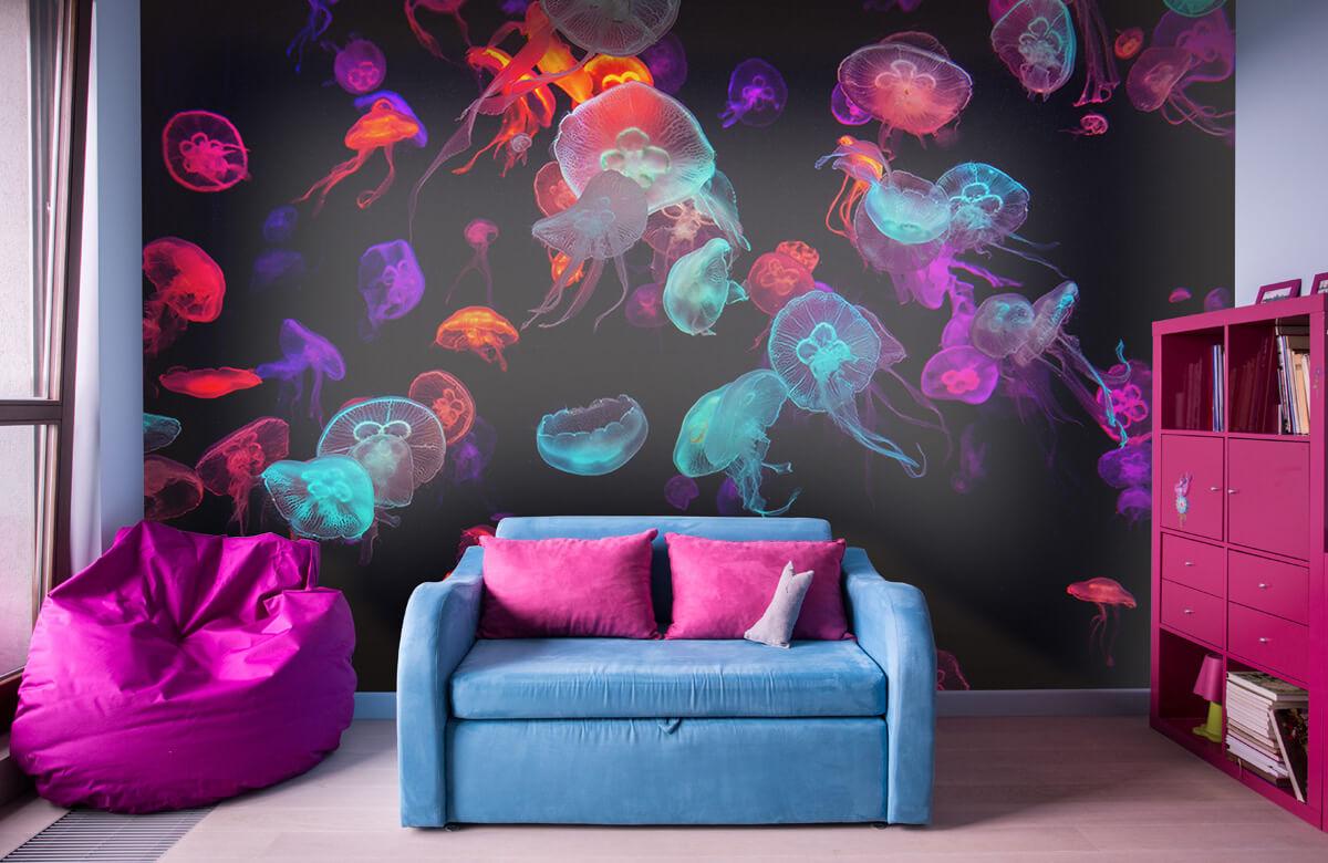 Animals Coloured jellyfish 10