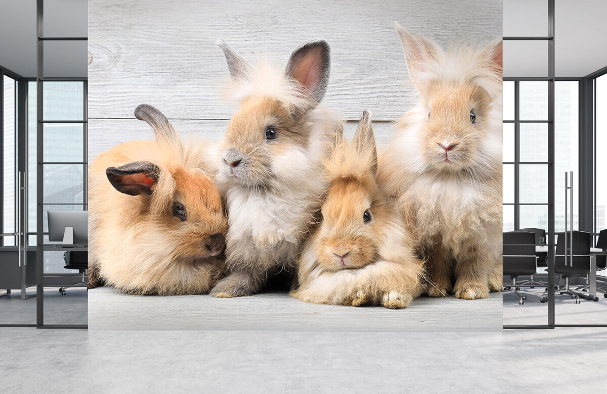 Wallpaper Small bunnies 2