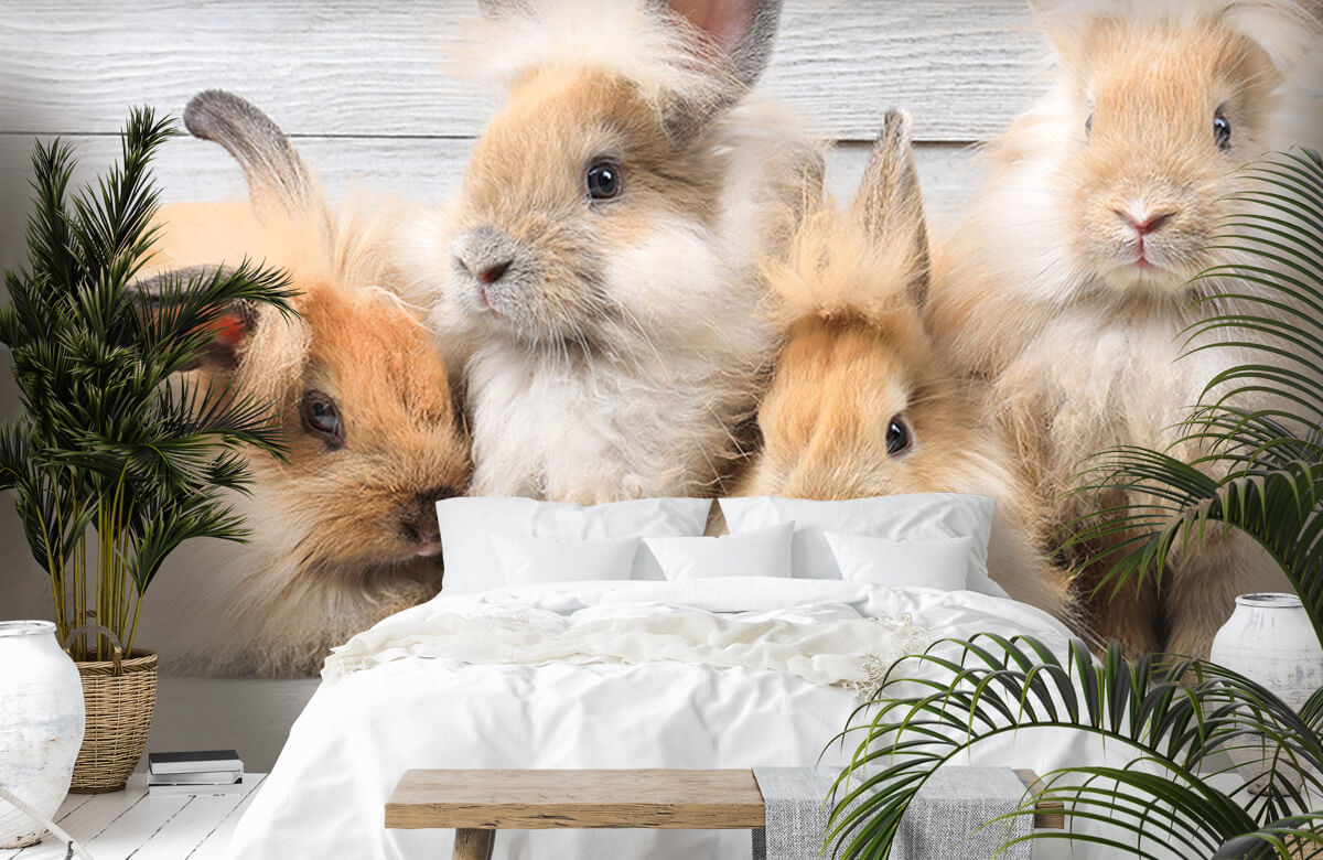 Wallpaper Small bunnies 5