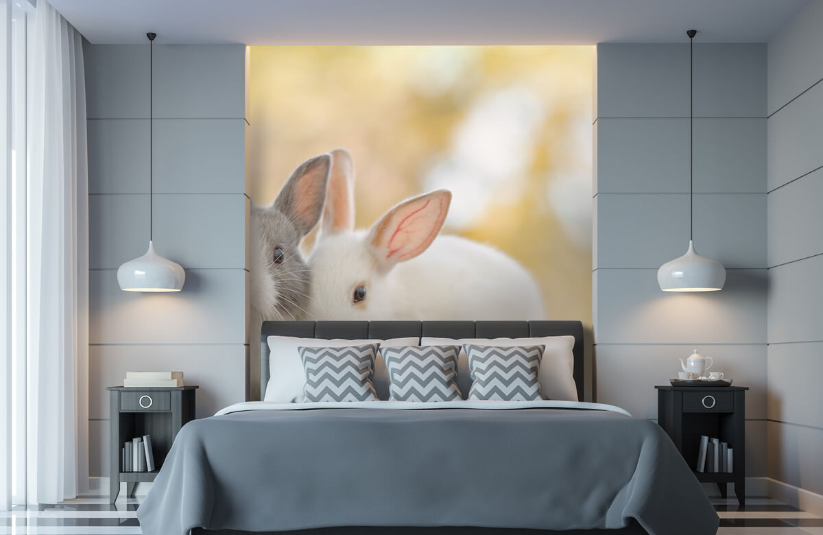Wallpaper Close-up of rabbits 11