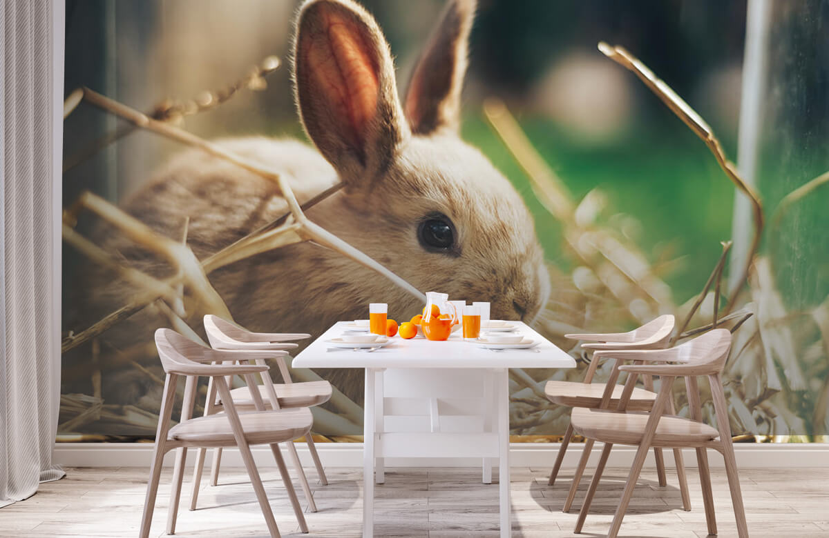 Wallpaper Rabbit in straw 2