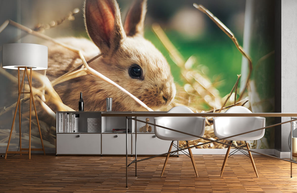 Wallpaper Rabbit in straw 5