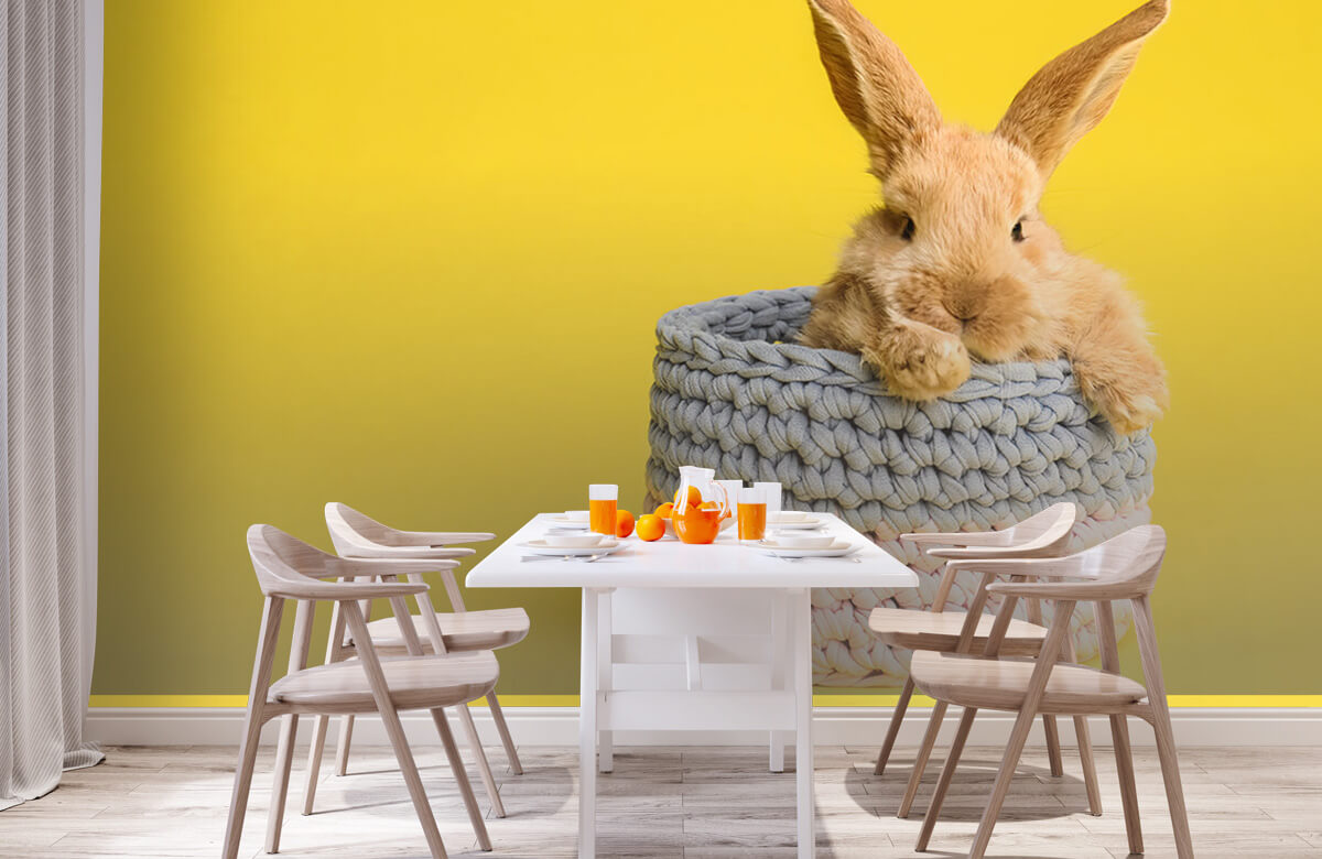 Wallpaper Rabbit in basket 3