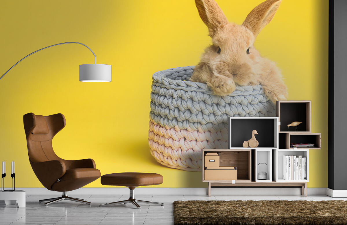 Wallpaper Rabbit in basket 9