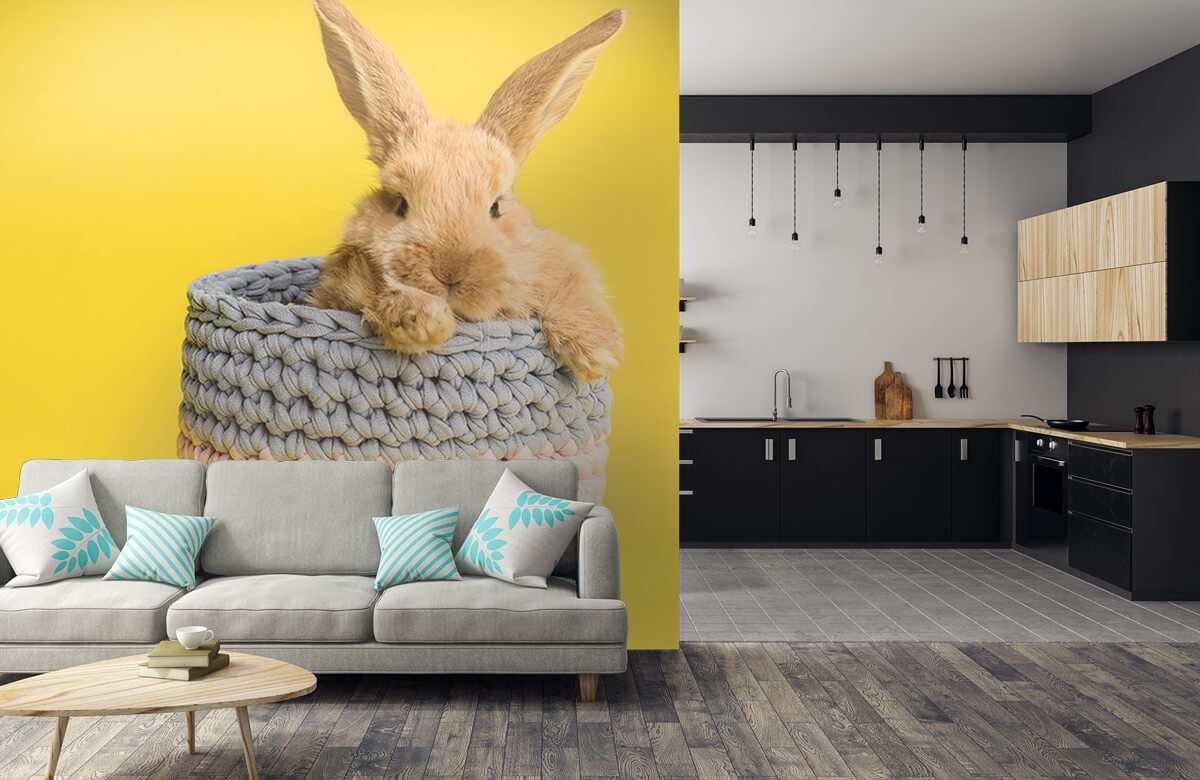 Wallpaper Rabbit in basket 10