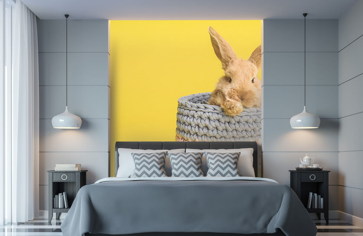 Wallpaper Rabbit in basket 11