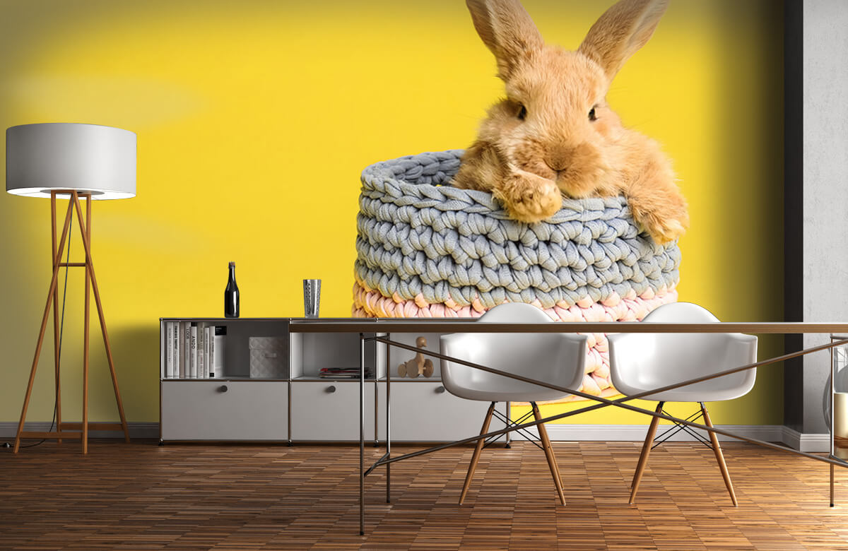 Wallpaper Rabbit in basket 2