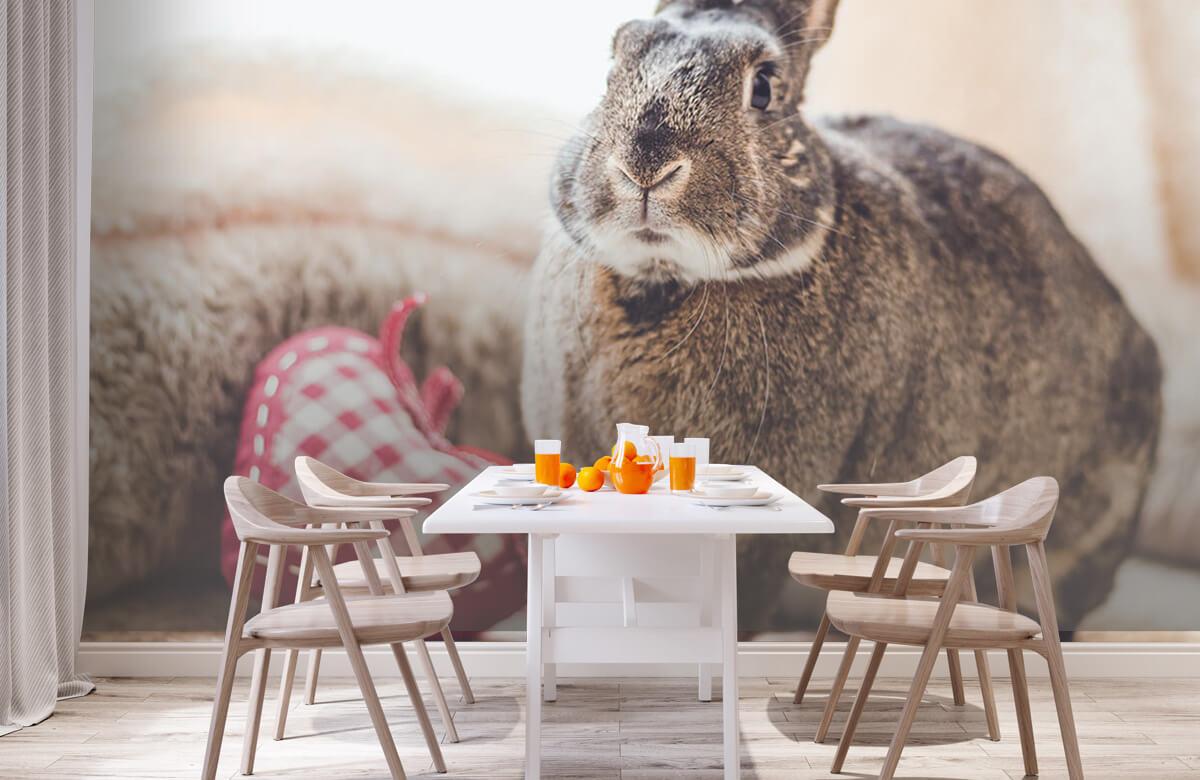 Wallpaper Rabbit with heart 3
