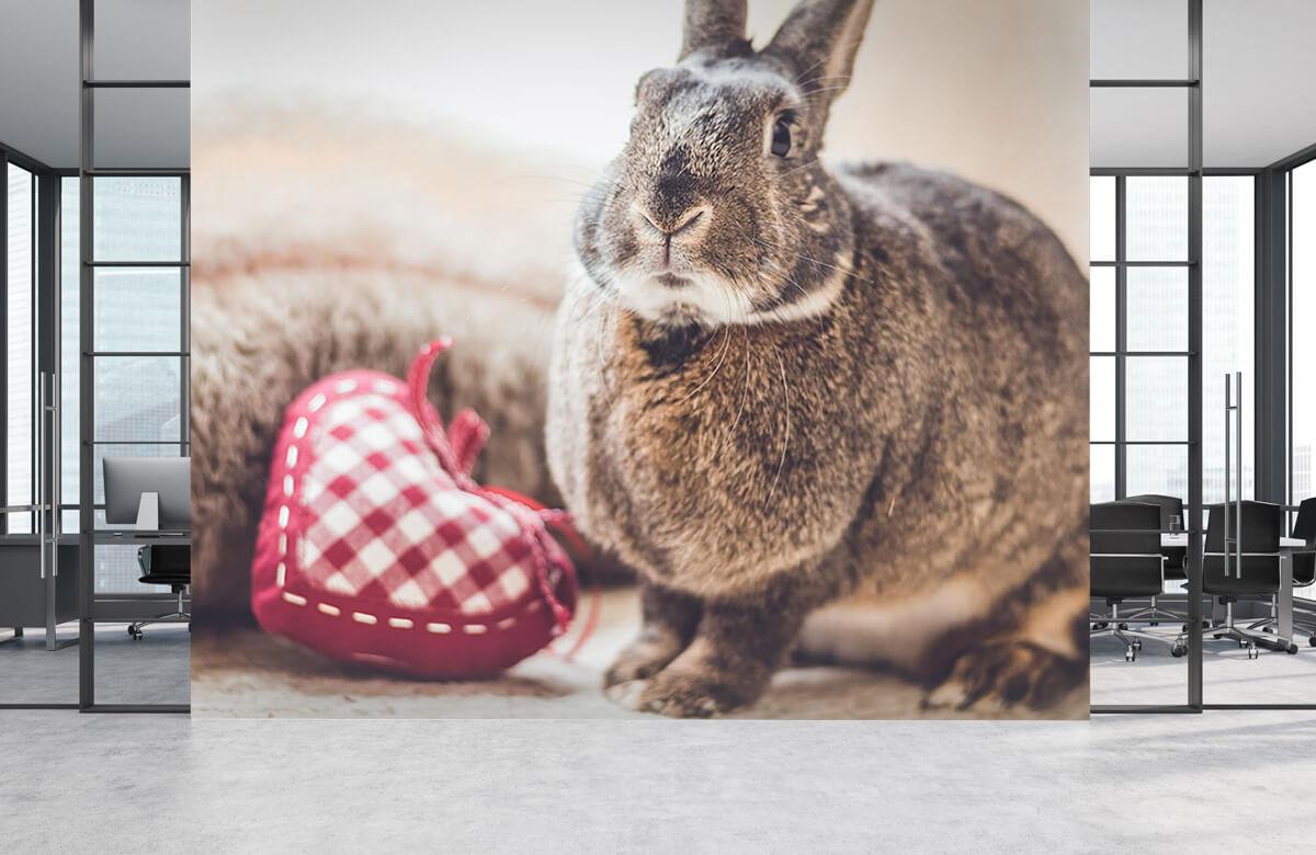 Wallpaper Rabbit with heart 2