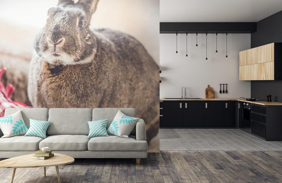Wallpaper Rabbit with heart 7