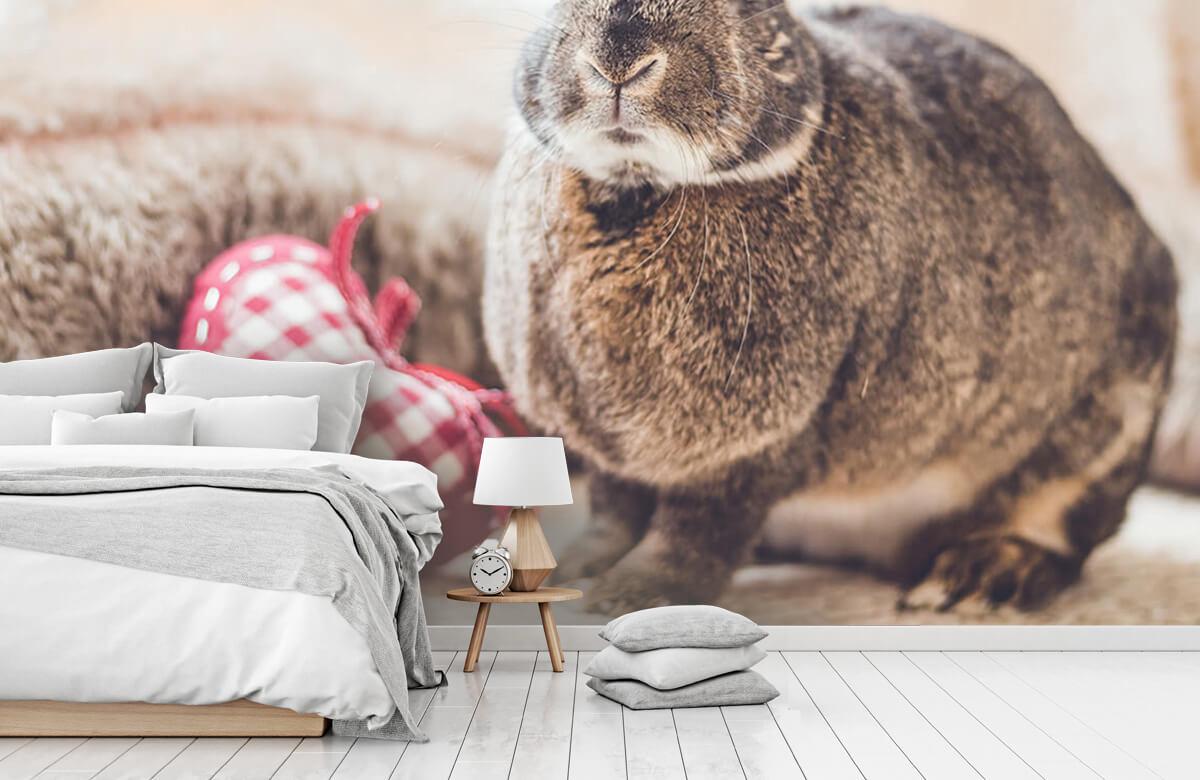Wallpaper Rabbit with heart 9