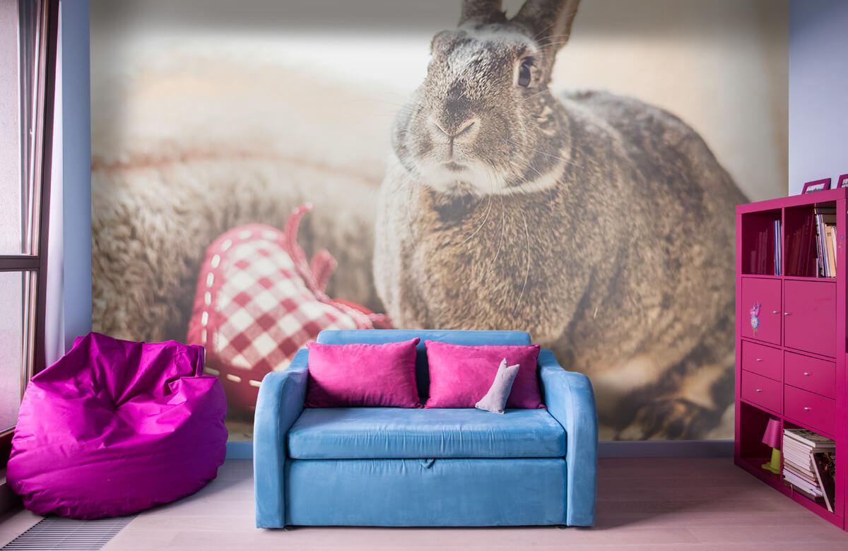 Wallpaper Rabbit with heart 1