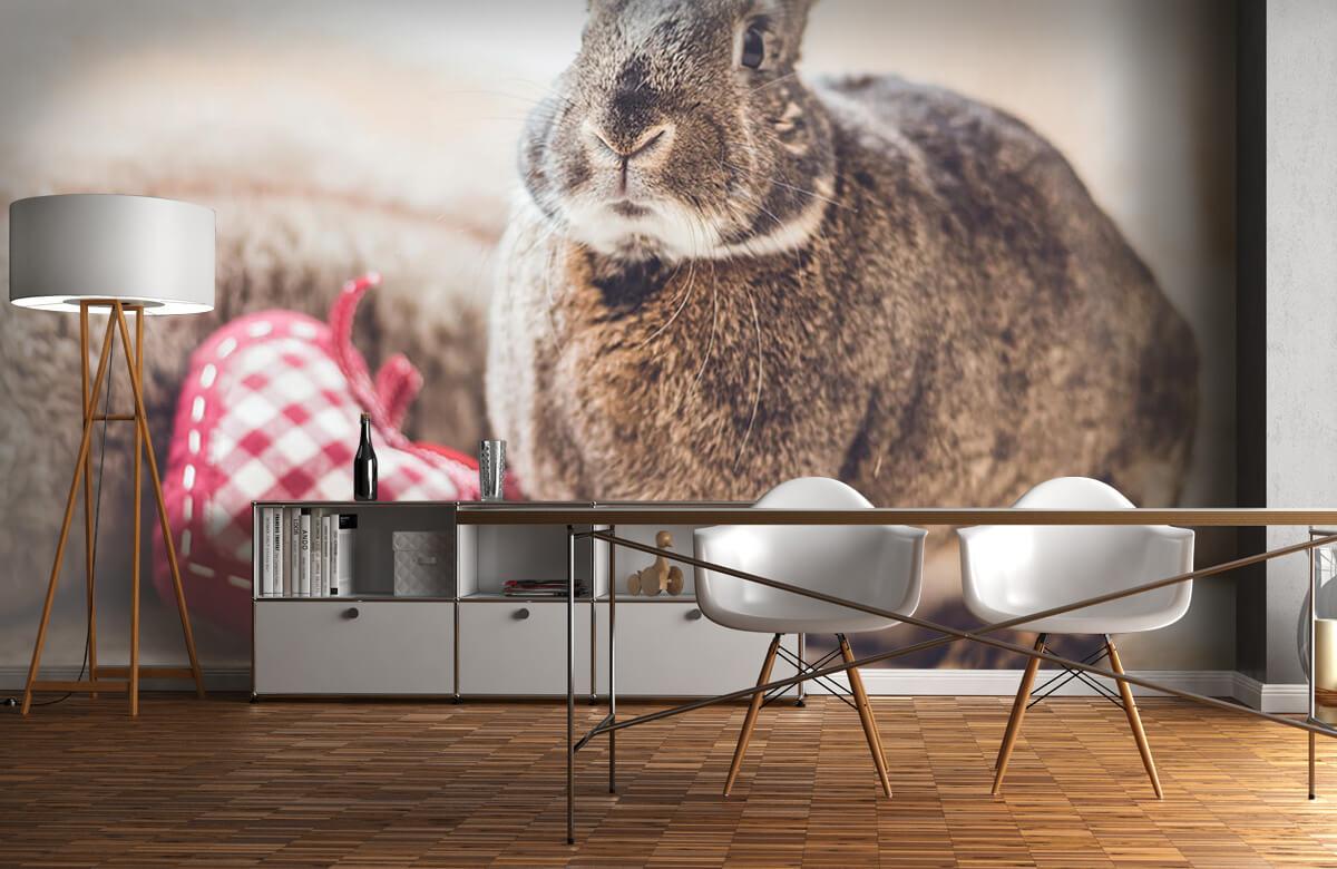 Wallpaper Rabbit with heart 11
