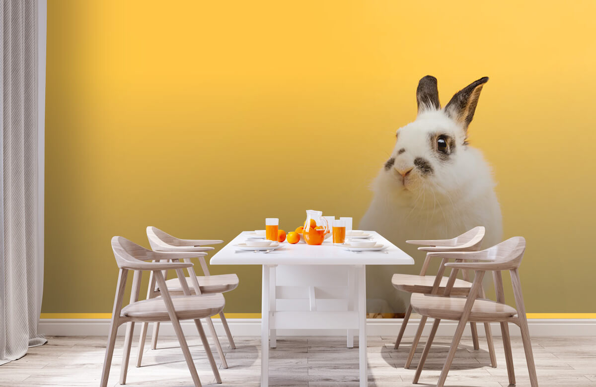 Wallpaper Posing rabbit 2