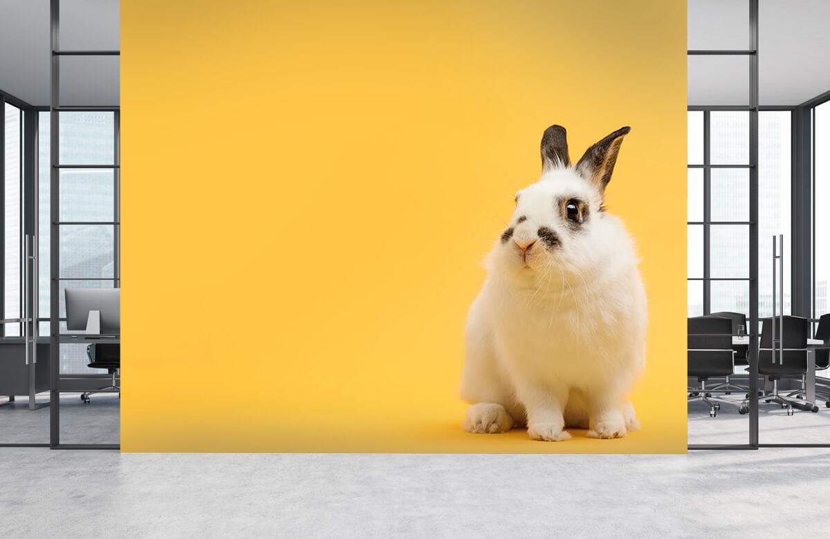 Wallpaper Posing rabbit 7