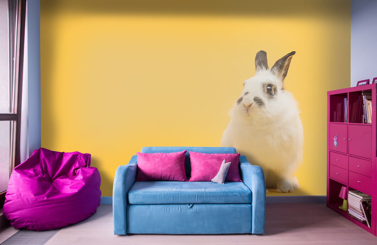 Wallpaper Posing rabbit 5