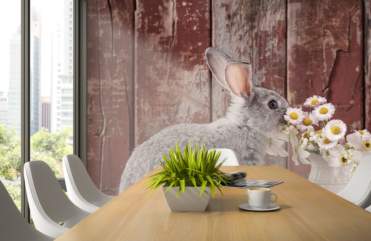Wallpaper Rabbit with daisies 4