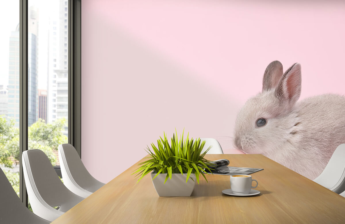 Wallpaper Rabbit with egg 5