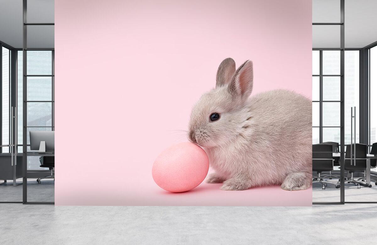 Wallpaper Rabbit with egg 6