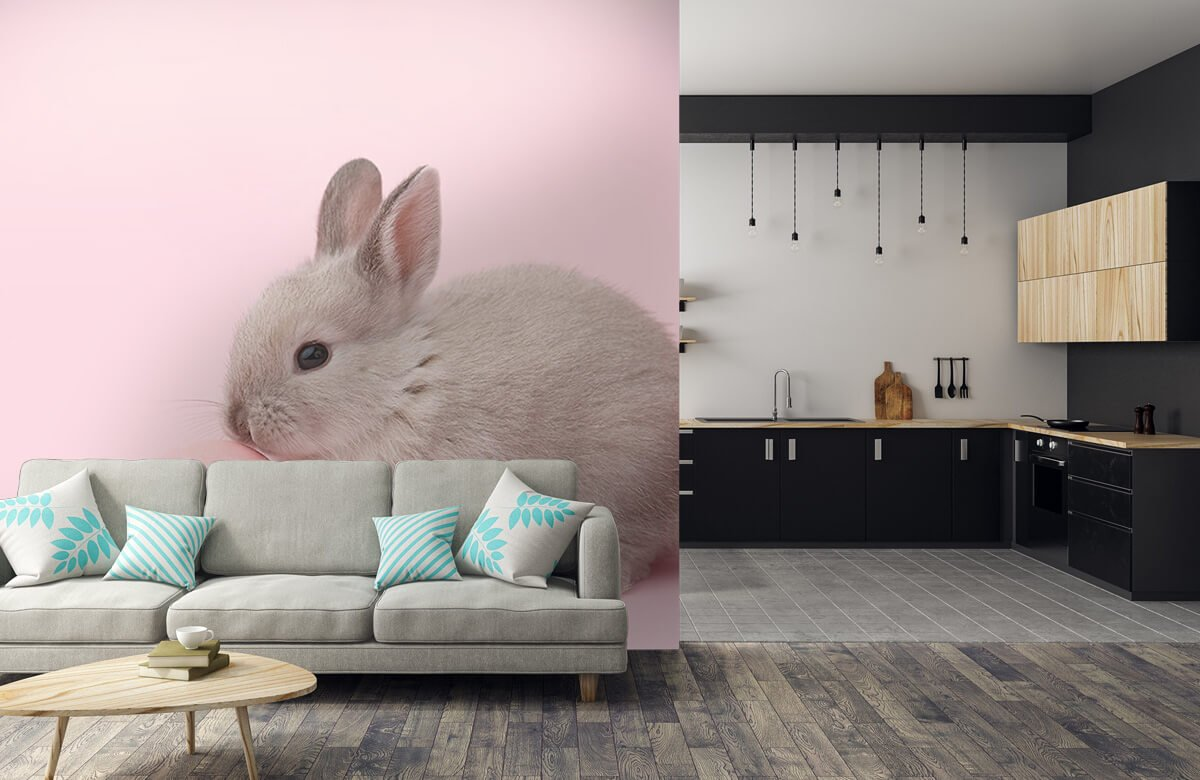 Wallpaper Rabbit with egg 10