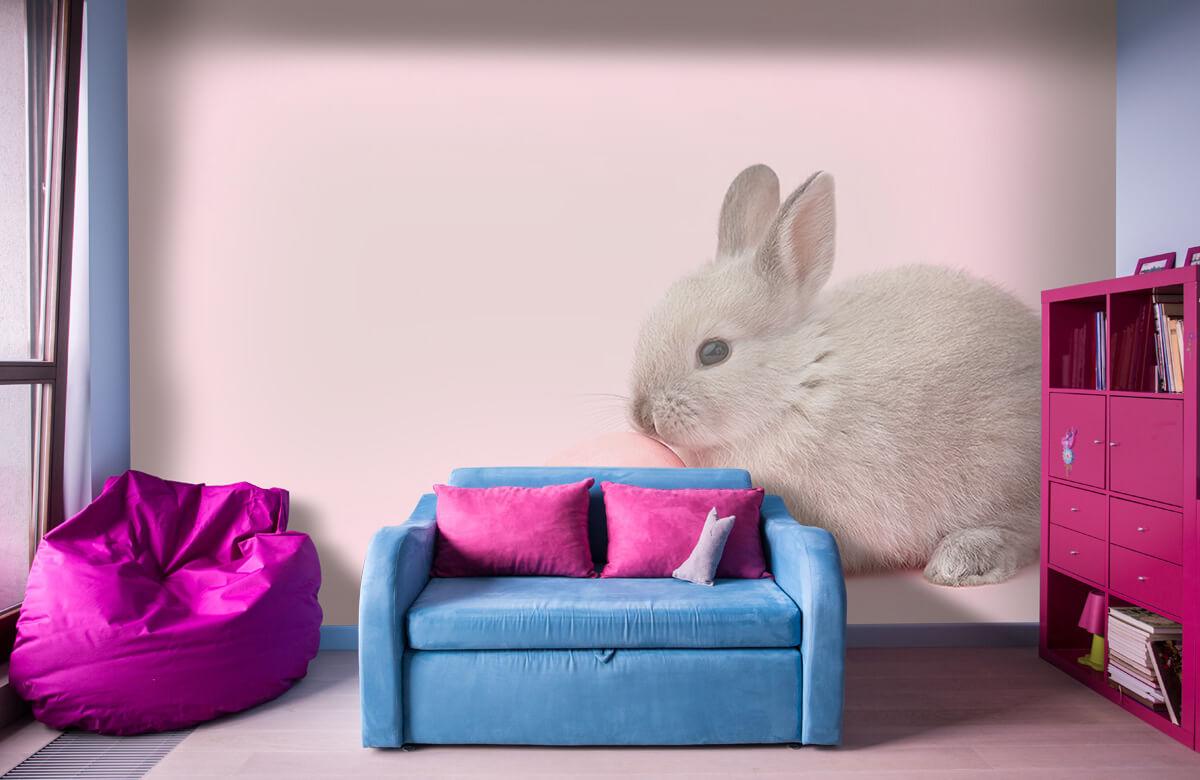 Wallpaper Rabbit with egg 1