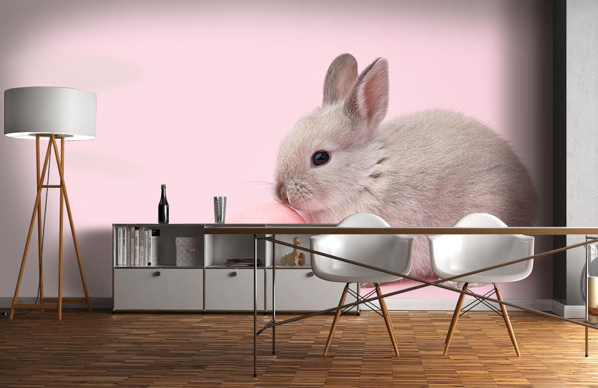 Wallpaper Rabbit with egg 3