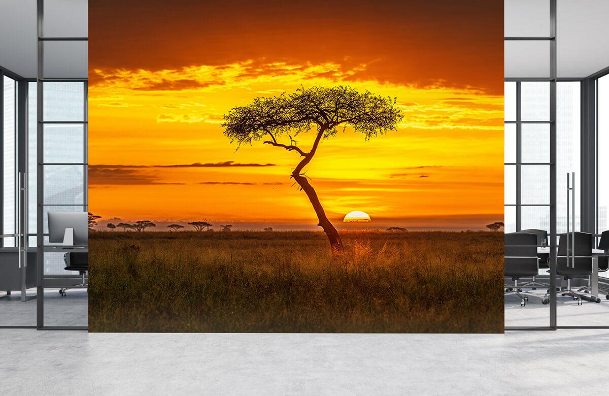 Primordial Africa 6