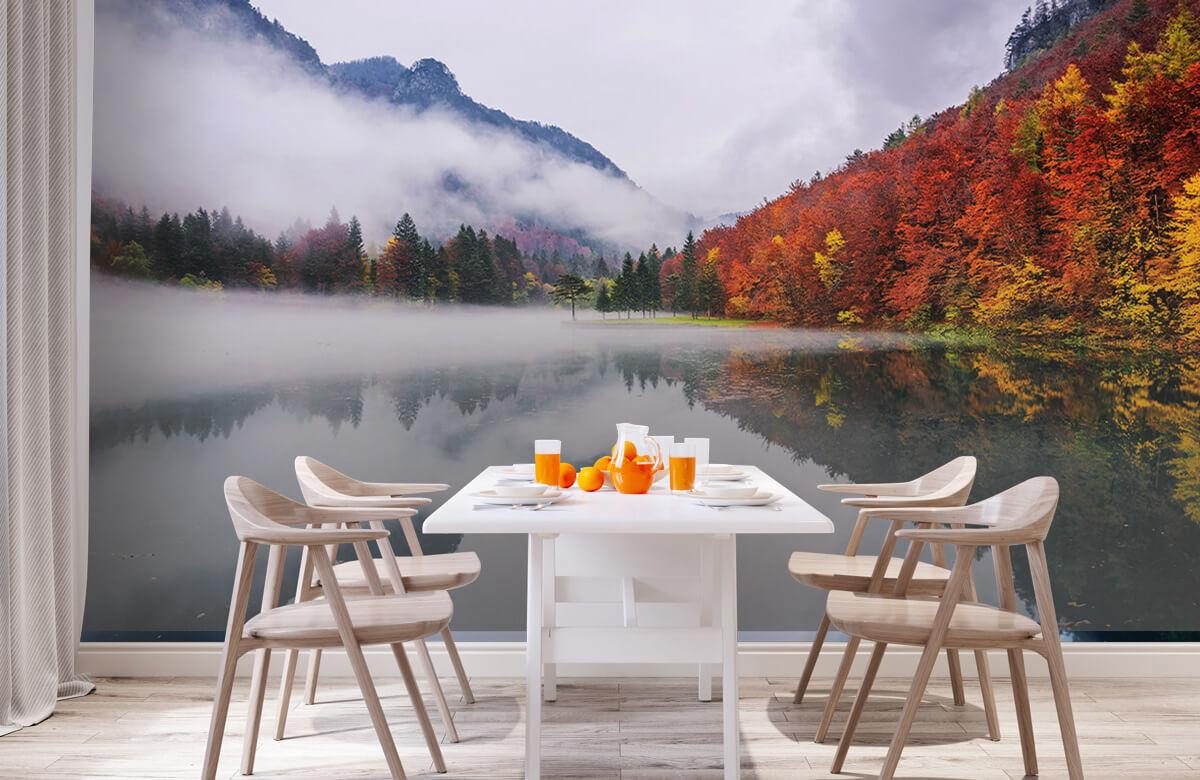 Autumn reflections 2