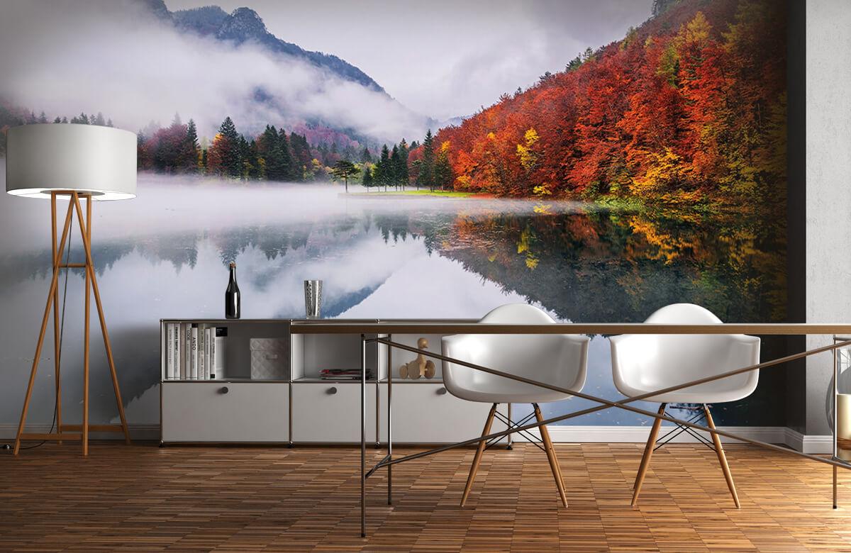 Autumn reflections 1