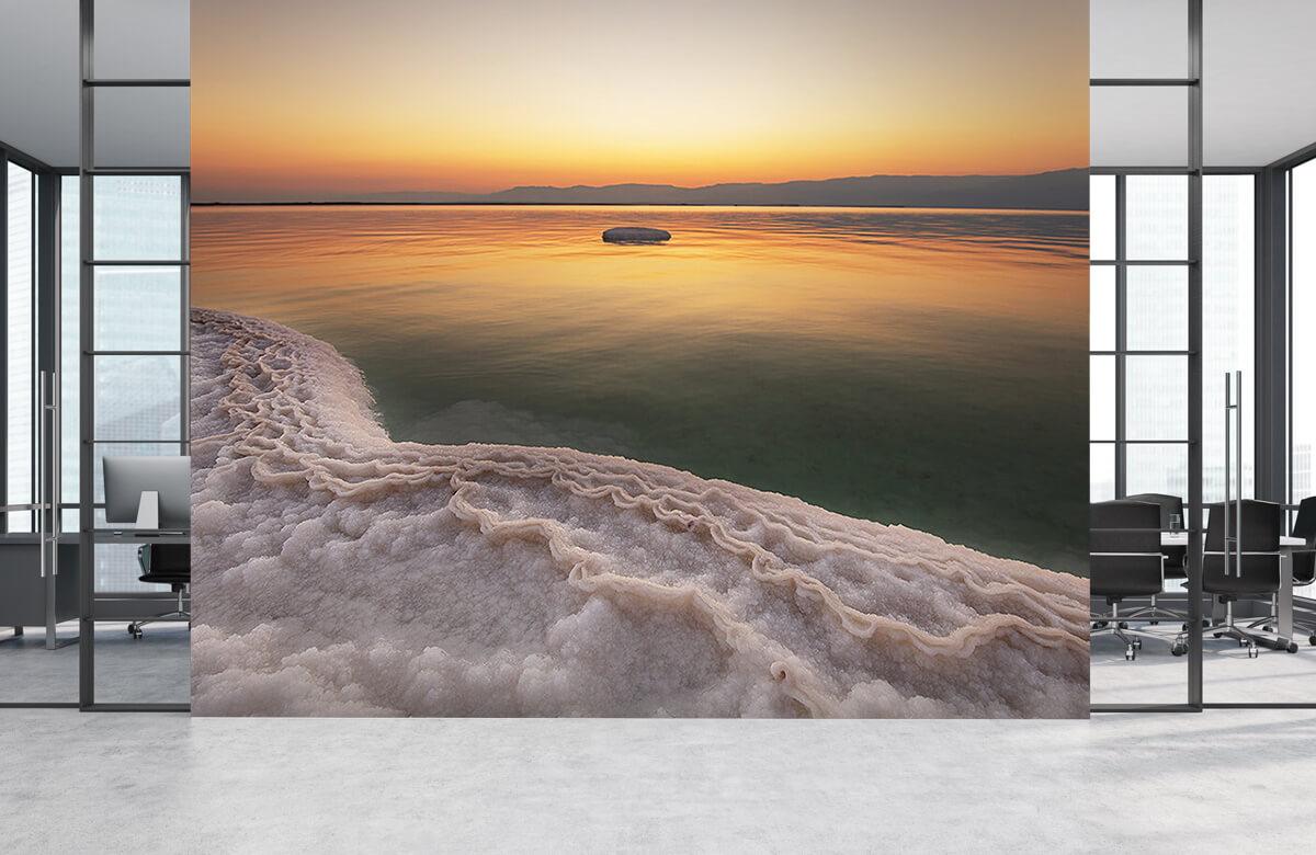Dead Sea 7