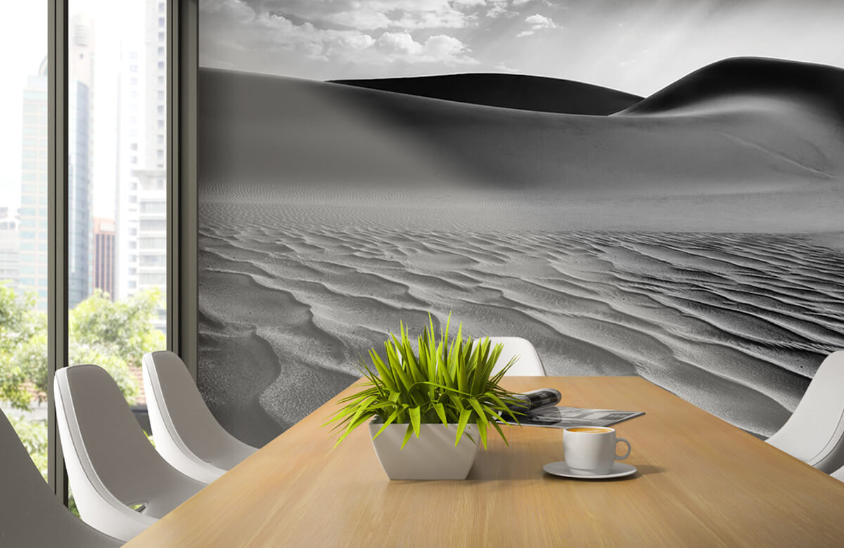 The Living Dunes, Namibia I 1