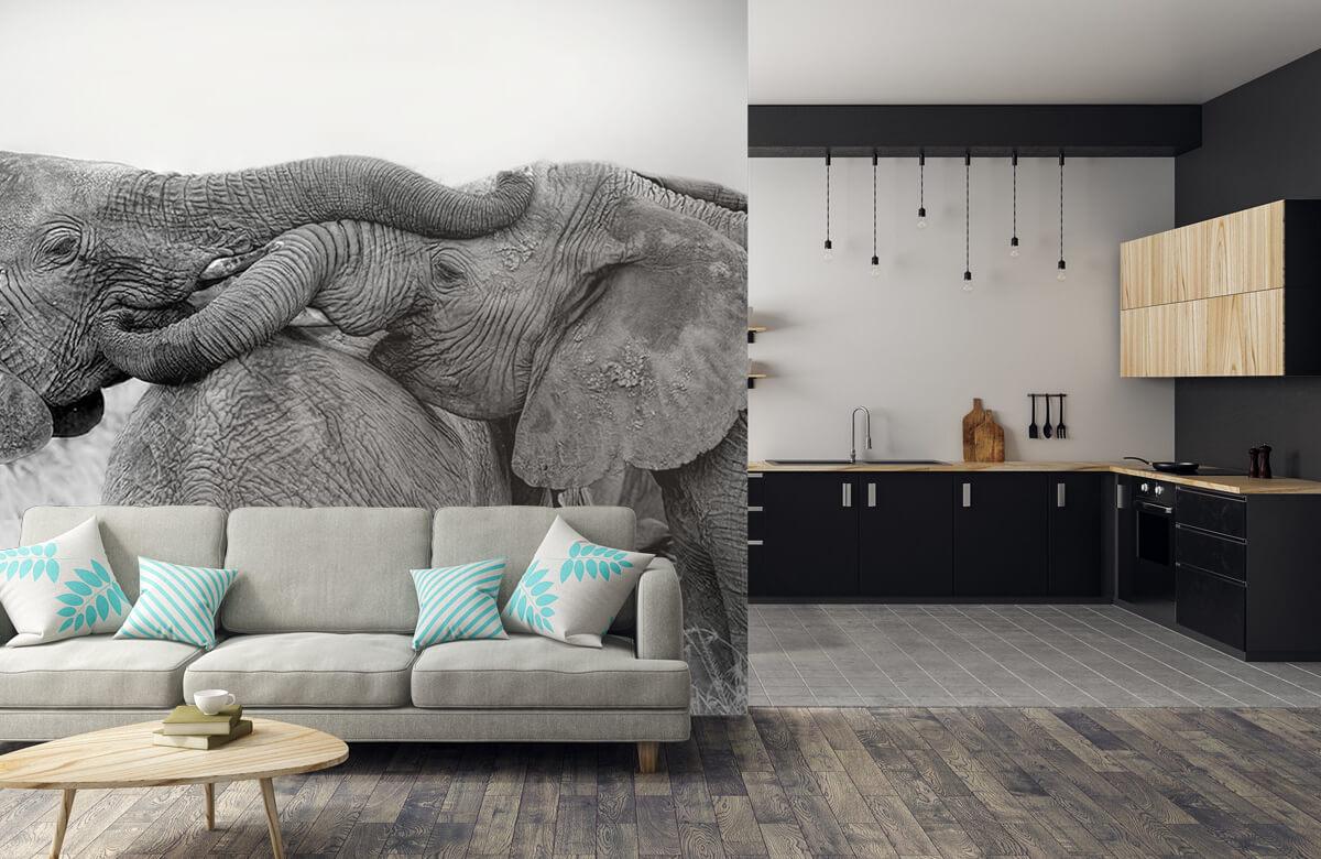 Elephant Playing 9
