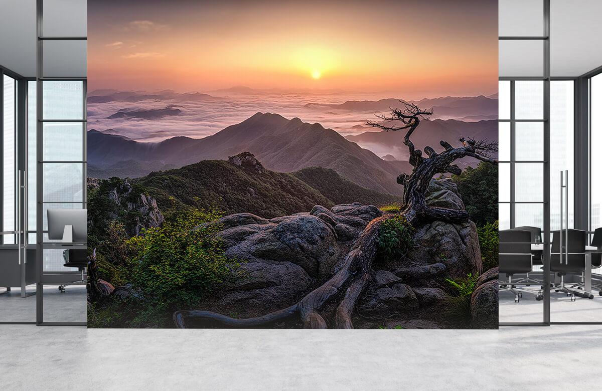 Sunrise on Top 7