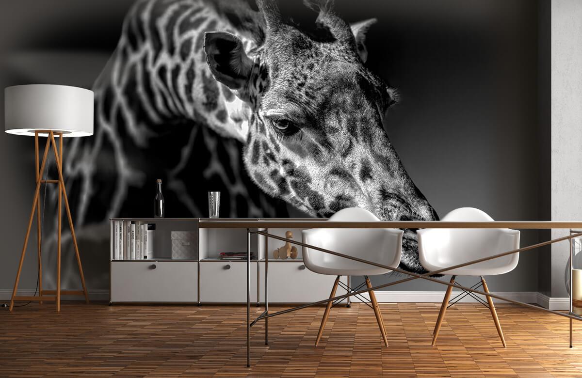Giraffe 2